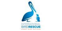 International Bird Rescue